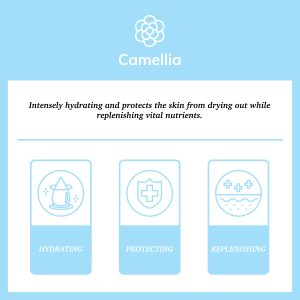 "Blue square with description of camellia's properties ""intensely hydrating and protects the skin from drying out while replenishing vital nutrients."""