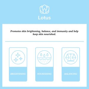 "Blue square with description of lotus flower's properties ""promomtes skin brightening, balance, and immunity, and helps keep skin nourished"""